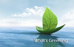 What's Greening